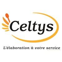 Logo Celtys